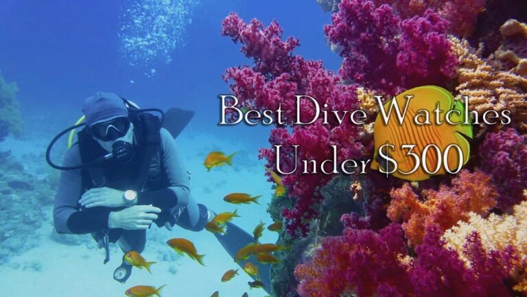 Best Dive Watches With Unique Designs For Scuba Divers And Swimmers Under $300