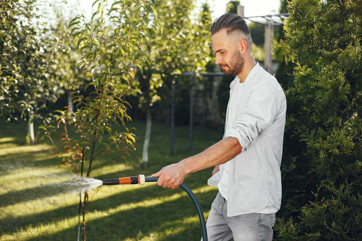 best-time-to-water-lawn-Florida