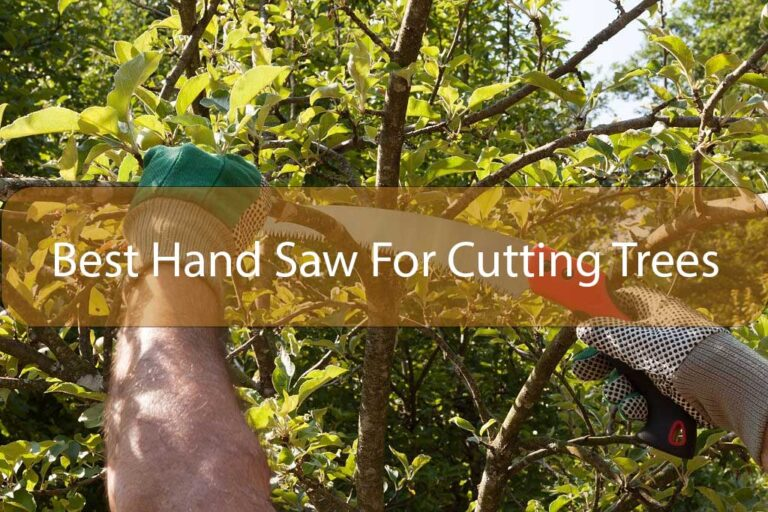 5 Best Hand Saw For Cutting Trees Review & Buying Guide 2021